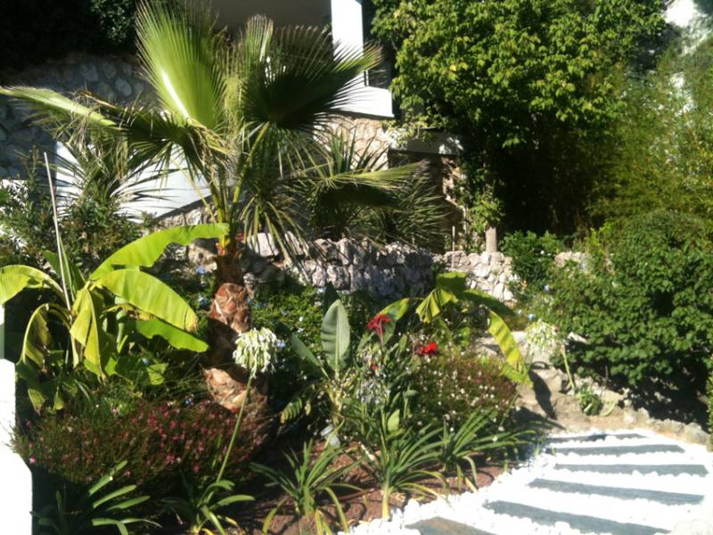 Cr ation d 39 un jardin contemporain exotique marseille for Jardin paysager contemporain